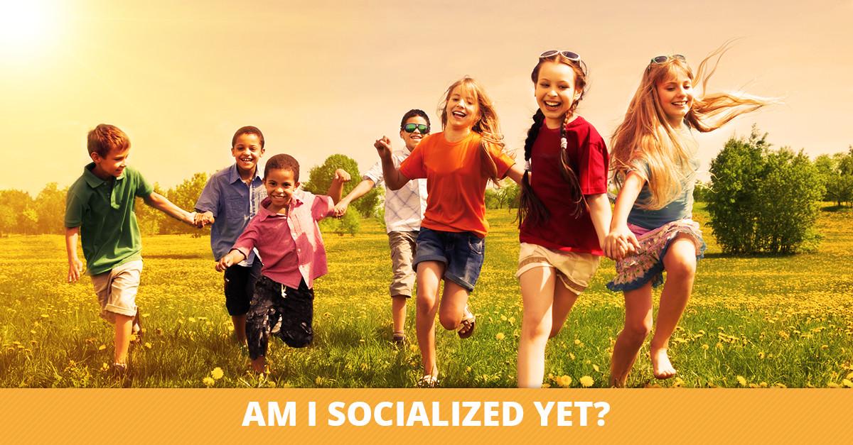 Am I Socialized Yet?