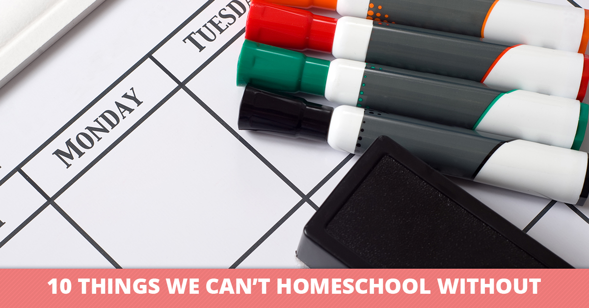 10 Things We Can't Homeschool Without