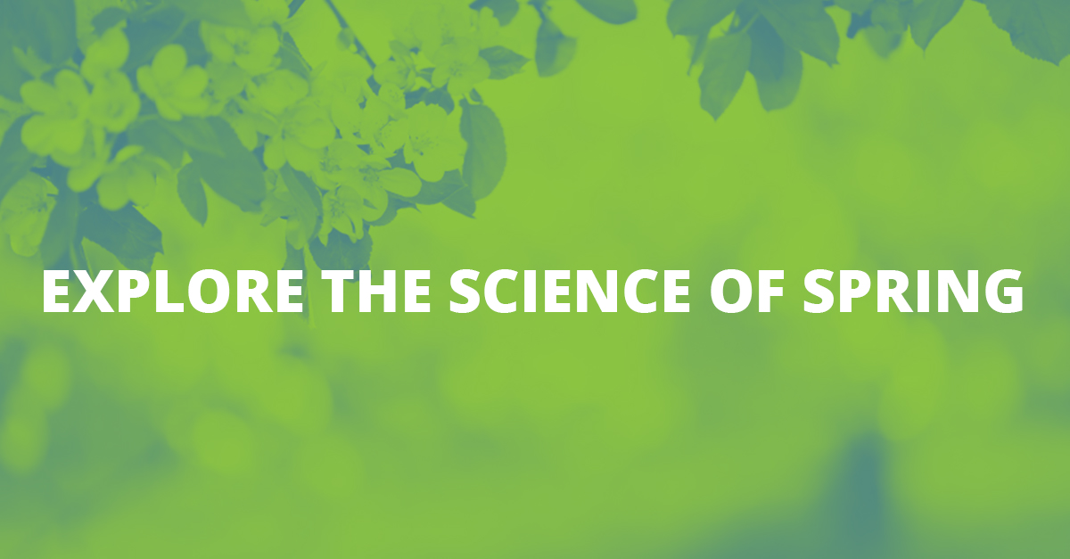 Explore the Science of Spring