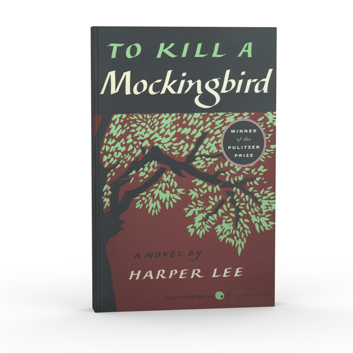 a literary analysis of the problem of injustice in to kill a mockingbird by harper lee To kill a mockingbird is a novel by harper lee published in 1960 it was immediately successful, winning the pulitzer prize, and has become a classic of modern american literature.